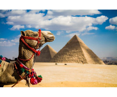 Ищу попутчицу в Египет