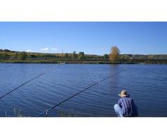 Ищу напарника для рыбалки на зарыбленном ставке (ловля бесплатная)